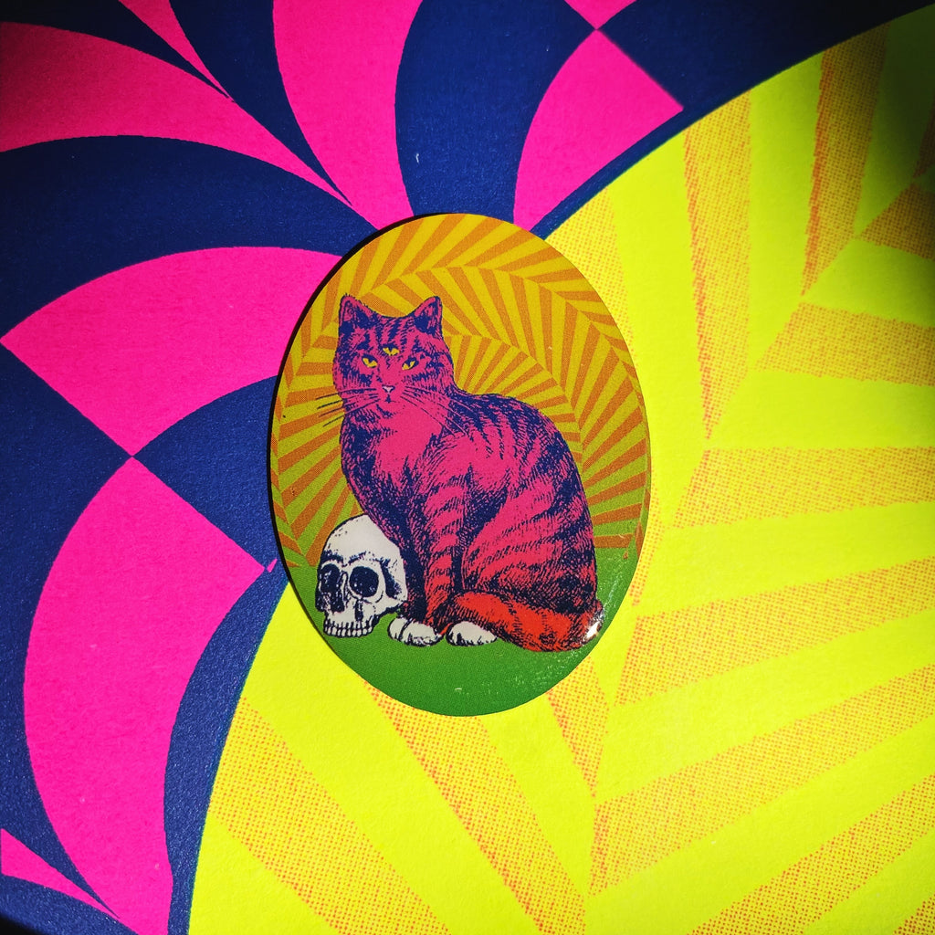 Groovy Cat Pin