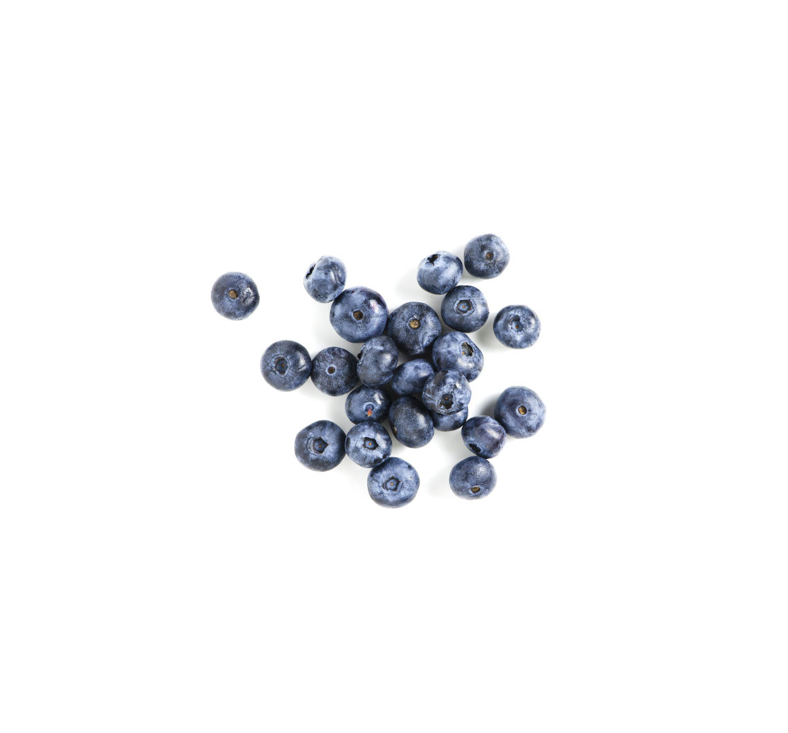 dried blueberries