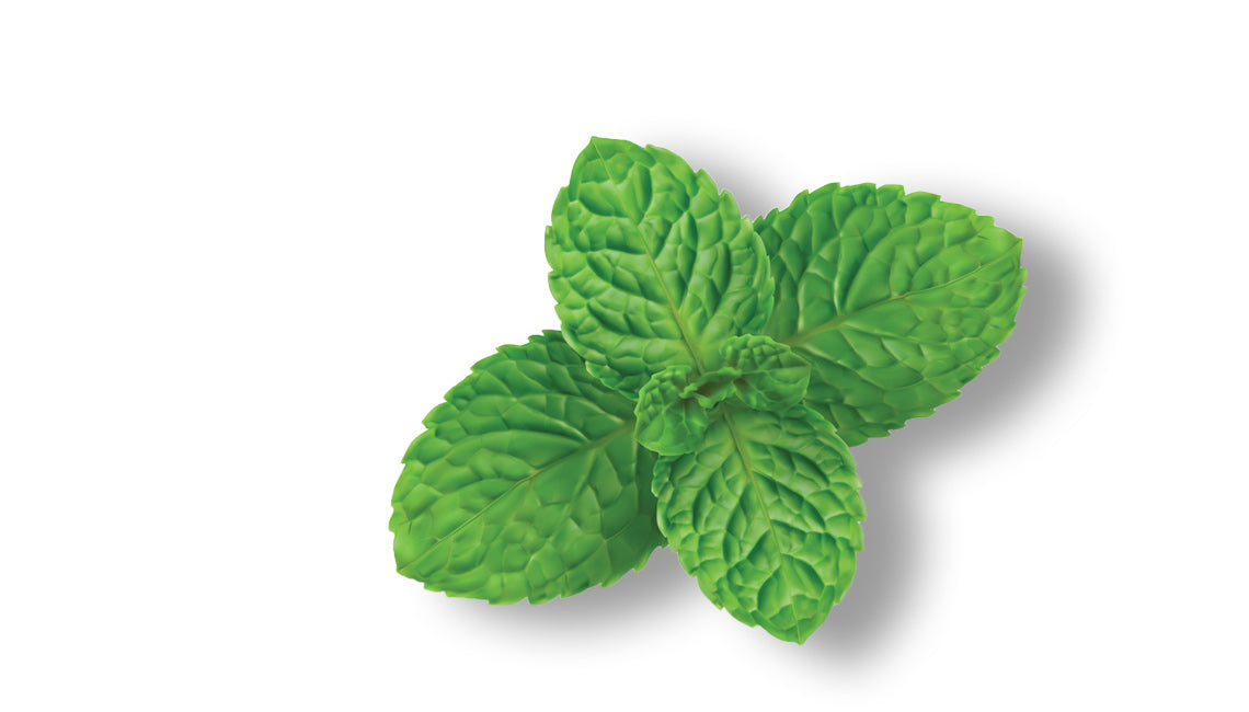natural peppermint flavor