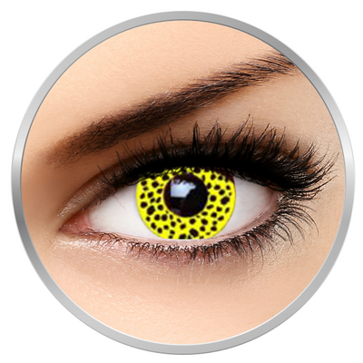 Auva Vision Fantaisie Yellow Cheetah - Yearly Contact Lenese for Halloween - 365 wears (2 lenses/box)