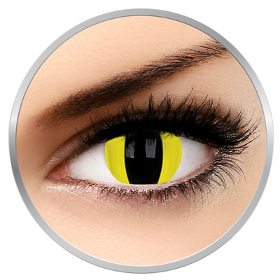 Phantasee Fancy Cheetara - Yellow Cat Contact Lenses yearly 17 mm - 360 wears (2 lenses/box)