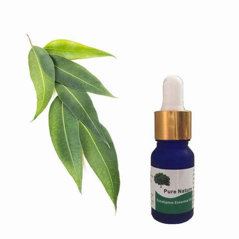 Image of 100% Pure Eucalyptus Essential Oil