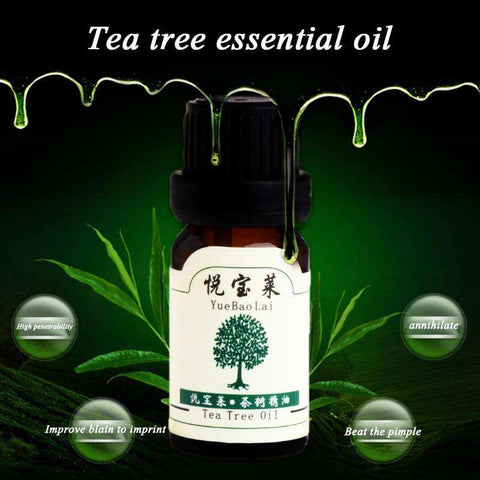 Image of 10ml Tea Tree Fragrant Essential Oil