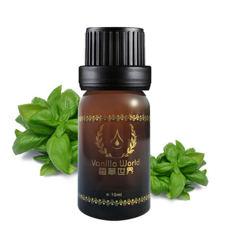 Basil Essential Oil 10ml Natural