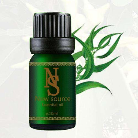 Image of Pure Eucalyptus Oil 10ml