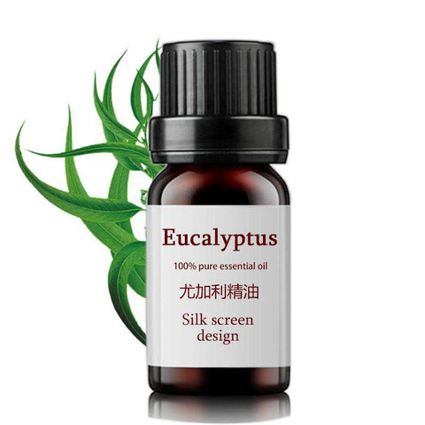 Image of Eucalyptus Oil 10ml