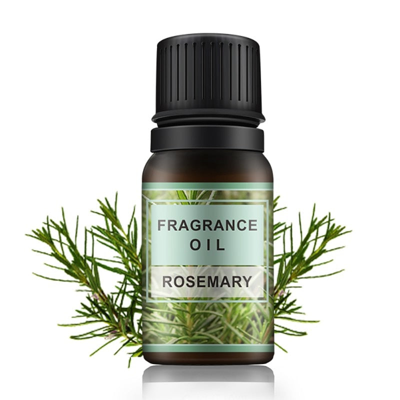 Fragrance Rosemary Essential Oil