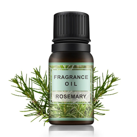 Image of Fragrance Rosemary Essential Oil