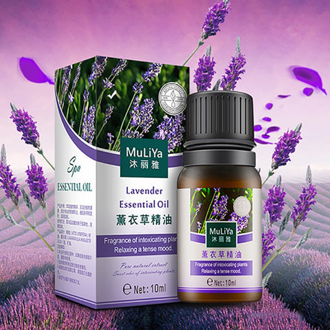 Image of Natural Lavender Essential Oil
