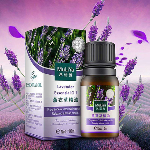 Image of Lavender Essential Oil Therapeutic Grade