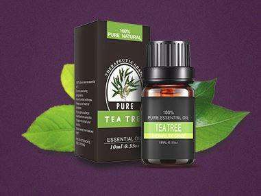 Image of Pure Tea Tree Plant Essential Oil