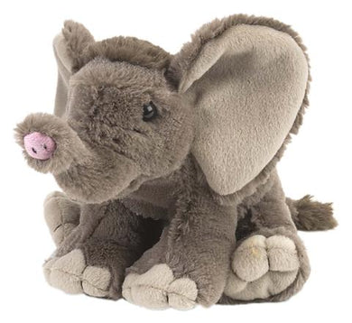 Baby African Elephant 8