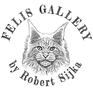 Felis Gallery by Robert Sijka