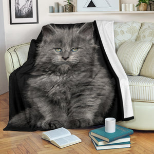 Premium Blanket - Blue Kitty