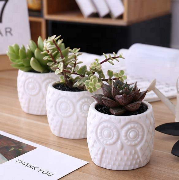 Owl Ceramic Pot