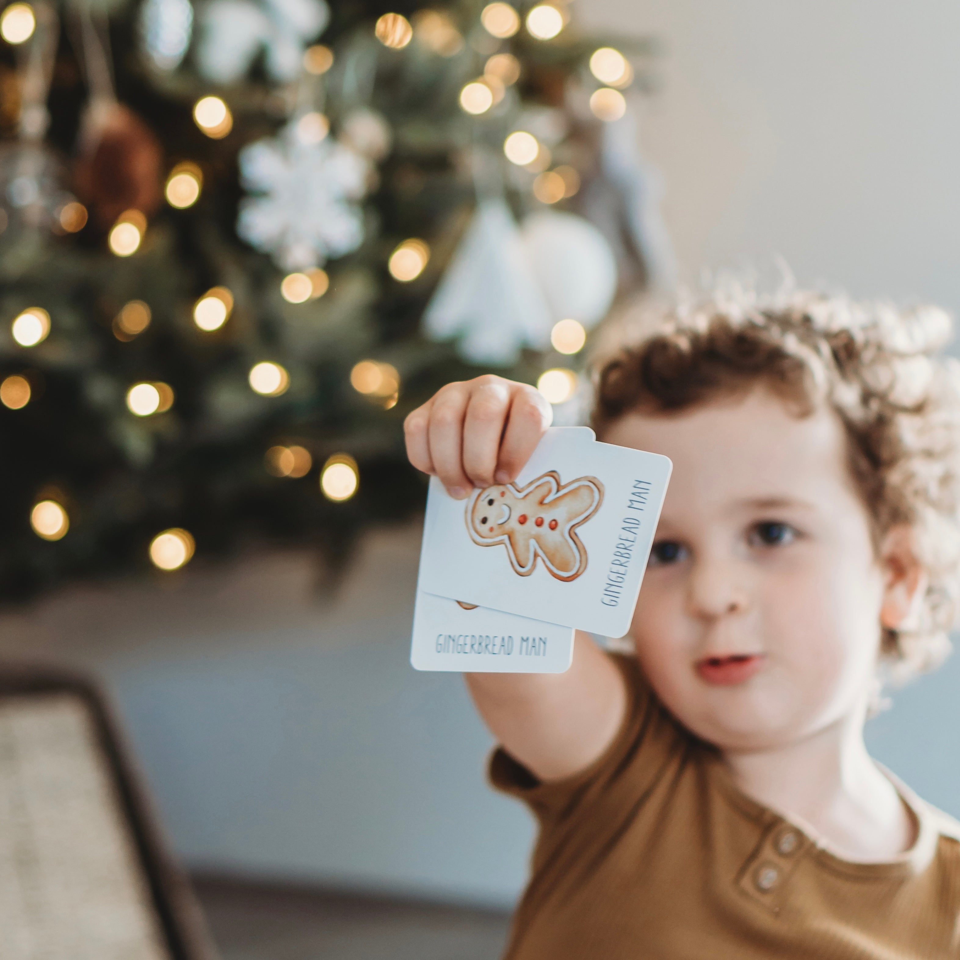 Christmas Snap and Go Fish Game