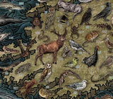 The Wildlife of Ireland hand-illustrated Map