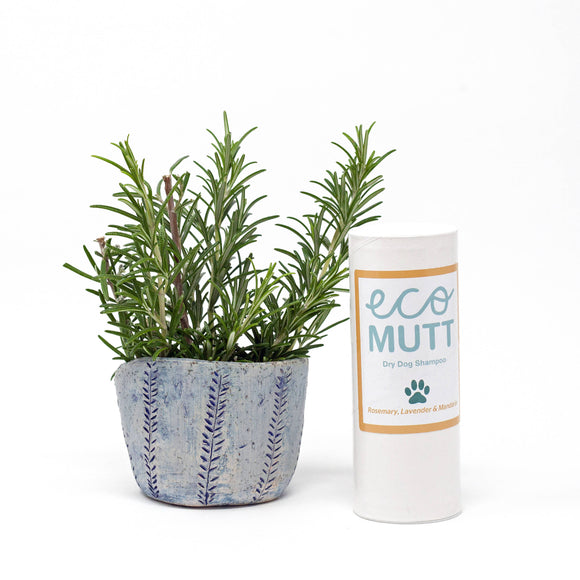 DRY dog shampoo - Rosemary, Lavender & Mandarin - The Biscuit Marketplace