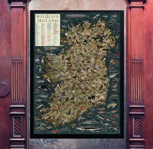 The Wildlife of Ireland hand-illustrated Map - The Biscuit Marketplace