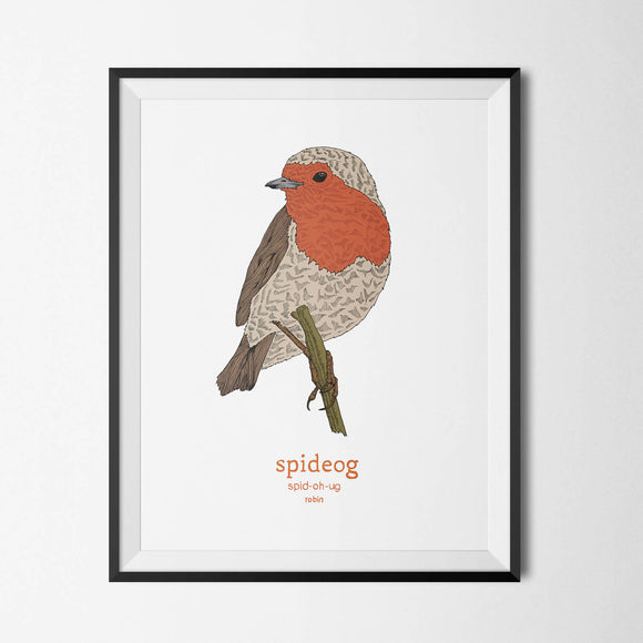 Spideog - Robin - Irish Print