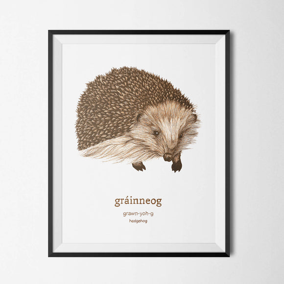 Gráinneog - Hedgehog - Irish Print - The Biscuit Marketplace