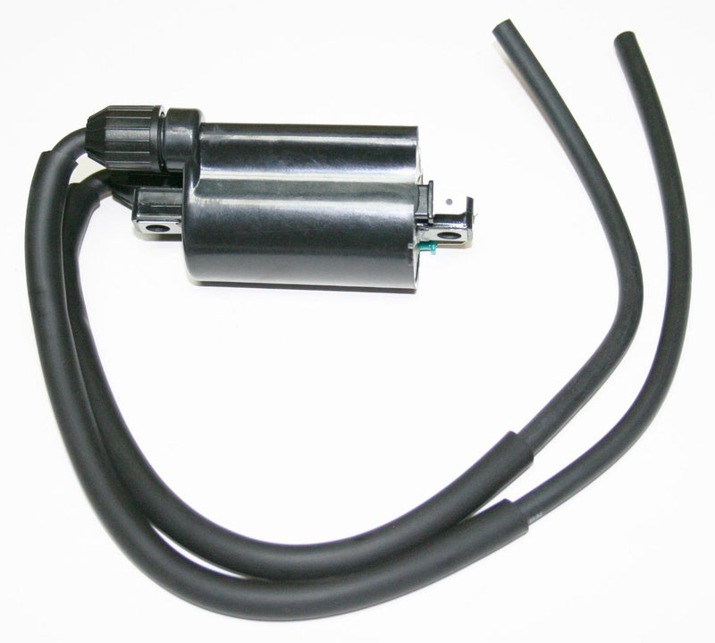 Ignition Coil - Goldwingparts.com