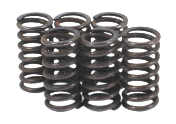 Clutch Spring Kit - Goldwingparts.com