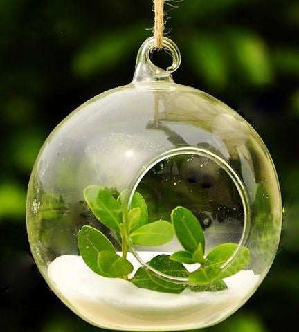 Clear Hanging Glass Vase, Clear Glass Terrarium, Clear Glass Candle Holder - FOB:US$ - MOQ: