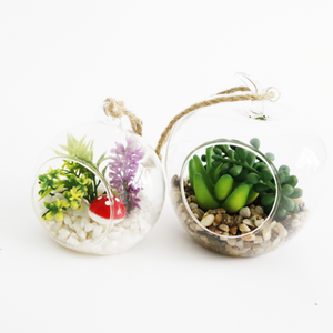 Glass Tanks Mini Landscapes Artificial Succulent Plants - FOB:US$2.20 - MOQ:500