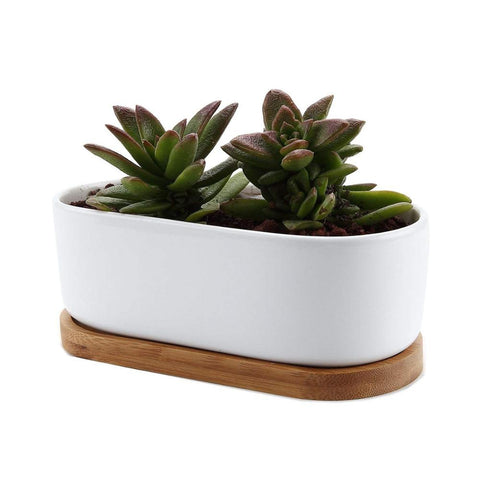 Ceramic White Oval Succulent Plant Pot - FOB:US$ - MOQ: