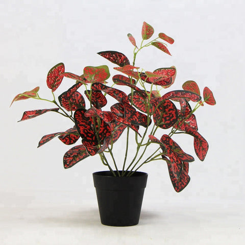 Great Quality Artificial House Plants - FOB:US$ - MOQ: