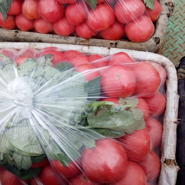 Chinese Red Fresh Tomato - FOB:US$1,320.00/Ton - MOQ: 20 Tons