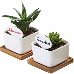 White Ceramic Small Square Succulent Cactus Flower Plant Pot With Bamboo Tray - FOB:US$ - MOQ: