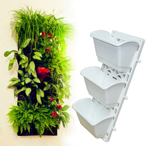 The Green Creeper Plant On Wall Creates A Beautiful Background - Removable Vertical Wall Planter - Buy Background Wall Planter,Green Wall Vertical Planter,Removable Vertical Wall Planter Product on Alibaba.com