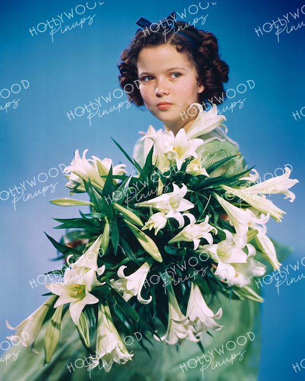 Shirley Temple White Lillies 1940 | Hollywood Pinups Color Prints