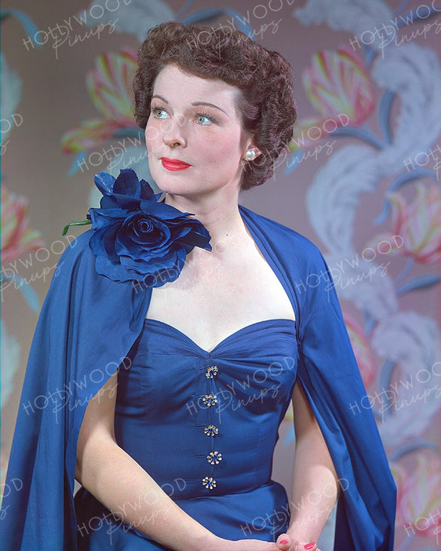 Ruth Hussey Blue Rose 1949 | Hollywood Pinups | Film Star Colour and B&W Prints