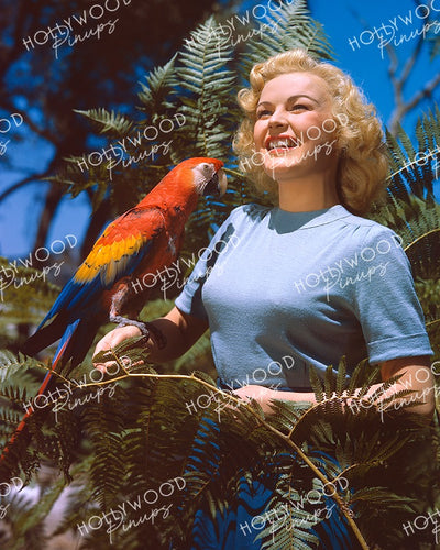 June Haver Dazzling Macaw 1945 KODACHROME | Hollywood Pinups Color Prints