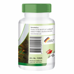 Kelp-Extrakt 100mg - 250 Tabletten