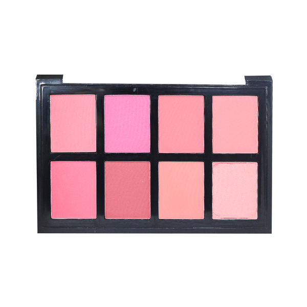 APK Proffessional Blush Palette 8 In 1 Shade 01