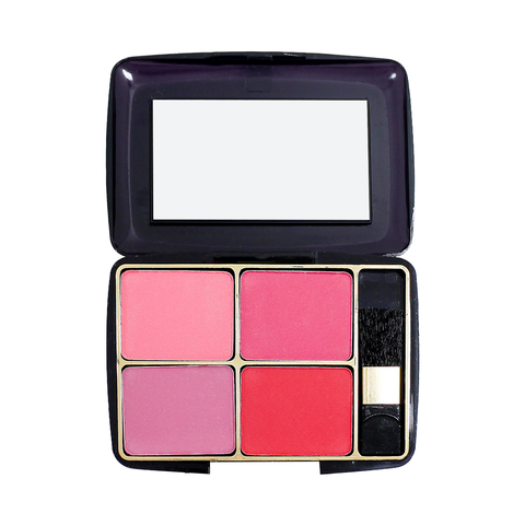 TFF 4 Color Blusher 02