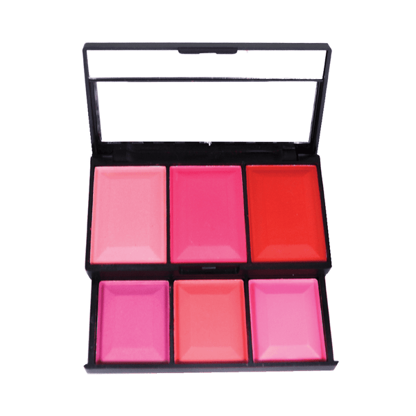 TFF 6 Color Matte Blusher Palette