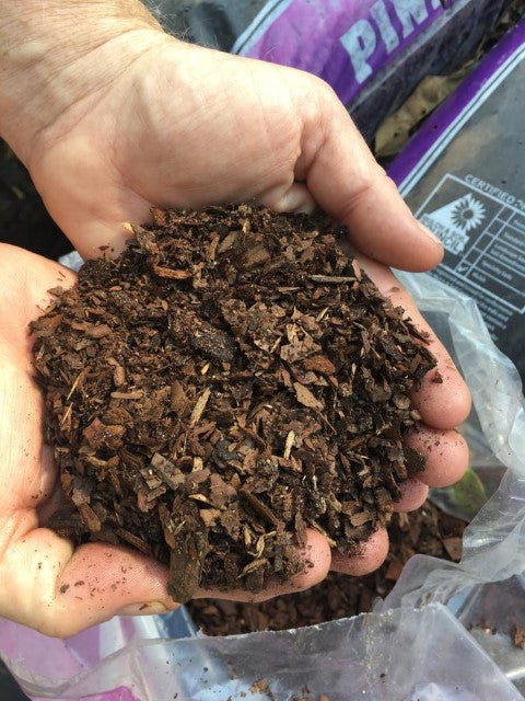 Potting Soil For Camellias & Tea Plants