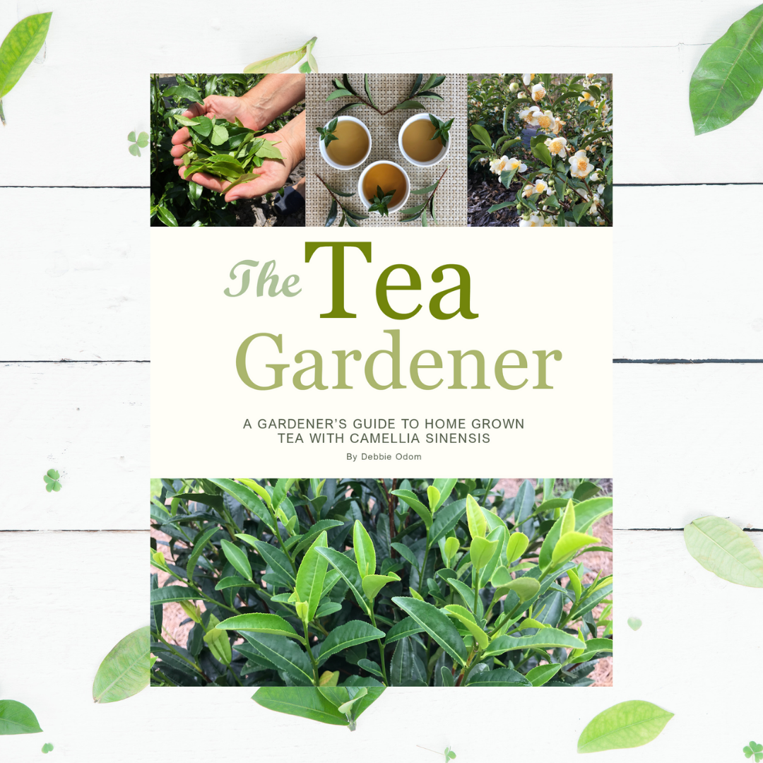 The Tea Gardener - A Gardener's Guide to Home Grown Tea