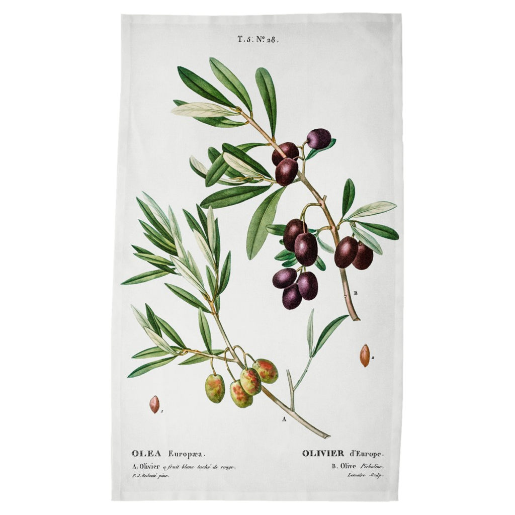 Harvest Tea Towels - Olives