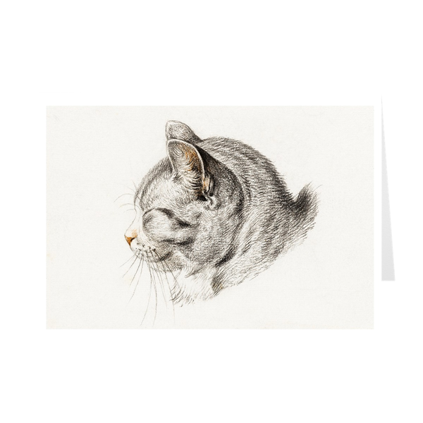 """Sketch of a cat"" Notecards"