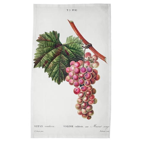 Harvest Tea Towels – Muscat Rouge