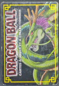 trading card game jcc carte dragon ball z collection Cartes À Jouer Et À Collectionner Part 7 D-570 bandai dbz chaozu