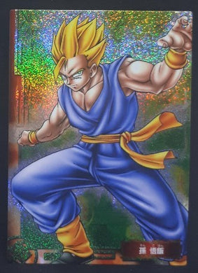 carte dragon ball z Collection Card Gum Part 1 SP n° 8 (2005) Ensky songohan dbz cardamehdz