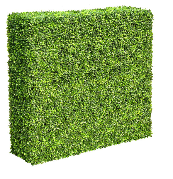 Mixed Boxwood Hedge UV Resistant 100cm Long x 100cm High