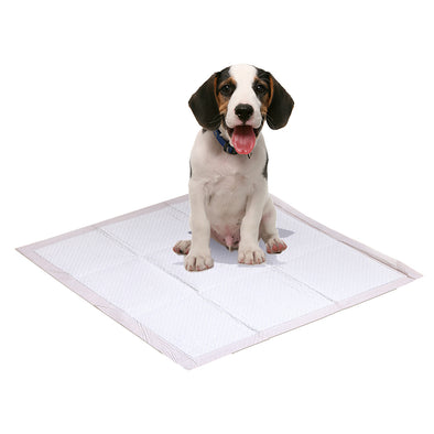 PawZ 100 Pcs 60x60 cm Pet Puppy Dog Toilet Training Pads Absorbent Meadow Scent